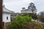 Resized 姫路城‥(西の丸) (7).jpg
